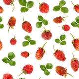 Bezszwowy wzór dojrzałe dzikie truskawki i liście fotografia royalty free