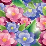 Bezszwowy wzór - Fiołkowi kwiaty Zdjęcia Royalty Free