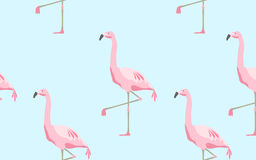 bezszwowy wzór flamingów ptaki nad błękitnym tłem Obrazy Royalty Free