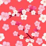 Bezszwowy wzór Japońskie kwiatonośnej wiśni gałąź ilustracji