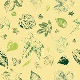 Bezszwowy wzór liści druki na żółtym tle Pocztówka z liści drukami Liść drzewa royalty ilustracja
