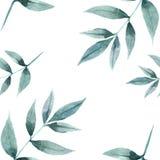 Bezszwowy wzór liście i gałąź ilustracji