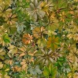 Bezszwowy wzór, liście, lato, zieleń, upał, flora, tapeta obraz stock
