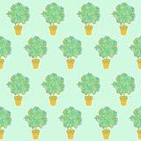 Bezszwowy wzór mały tangerine drzewo w garnku w konturowym sty obraz stock