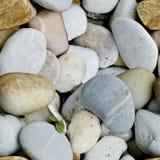 Bezszwowy wzór morze kamień Fotografia Royalty Free