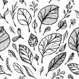 Bezszwowy wzór od ręka remisu struktury liście czerni na bielu w kreskowej sztuce dla projekt ulotki sztandaru dla dekoracja paku ilustracji