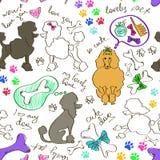 Bezszwowy wzór pudli psy Zdjęcie Royalty Free