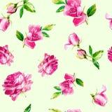 Bezszwowy wzór róże w akwareli obrazy stock