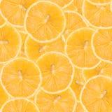 Bezszwowy wzór robić cytryna Smakowita soczysta owocowa tekstura Obraz Stock
