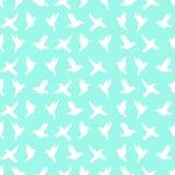 Bezszwowy wzór sylwetka colibri Fotografia Stock