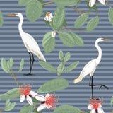Bezszwowy wzór, tło z tropikalnymi roślinami royalty ilustracja