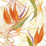 Bezszwowy wzór tropikalni liście i kwiaty Zdjęcia Stock