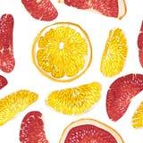 Bezszwowy wzór w wektorze z cytrus owoc plasterkami ilustracji
