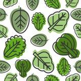 Bezszwowy wzór warzywo opuszcza tak jak kale, szpinak, lett ilustracji