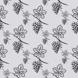 Bezszwowy wzór winogrono Zdjęcia Royalty Free