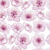Bezszwowy wzór wiosna kwiaty różowa wiśnia, Sakura na przejrzystym tle Pomysł dla projekta karty, royalty ilustracja