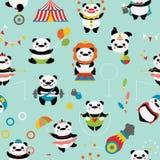 Bezszwowy wzór z ślicznymi pandami: cyrkowi błazeny, jugglers, magik, akrobata Obrazy Stock