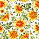 Bezszwowy wzór z żółtymi akwarela kwiatami Obraz Stock
