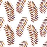 Bezszwowy wzór z akwarela paprociowymi liśćmi Zdjęcie Stock