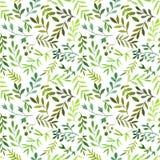 Bezszwowy wzór z akwarela paprociowymi liśćmi Zdjęcia Royalty Free