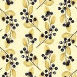 Bezszwowy wzór z akwareli ilustracjami czarne jagody rozgałęzia się ilustracja wektor