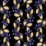 Bezszwowy wzór z akwareli ilustracjami czarne jagody rozgałęzia się ilustracji