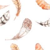 Bezszwowy wzór z akwareli piórkami Obrazy Royalty Free