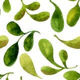 Bezszwowy wzór z akwareli zieleni liśćmi ilustracji