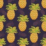Bezszwowy wzór z ananasami Obraz Stock