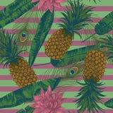 Bezszwowy wzór z ananasami, lotuses, paw upierza na lampasach wektor Zdjęcia Stock
