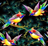 Bezszwowy wzór z bajkowymi ptakami Obraz Royalty Free