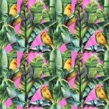 Bezszwowy wzór z bananów liśćmi i żółtymi ptakami na różowym tle obraz royalty free