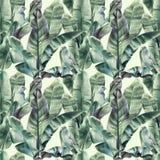 Bezszwowy wzór z bananów liśćmi i egzotycznymi ptakami na delikatnym beżowym tle zdjęcia stock