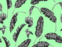 Bezszwowy wzór z bananowymi liśćmi Dekoracyjny wizerunek tropikalny ulistnienie, kwiaty i owoc, Tło robić royalty ilustracja