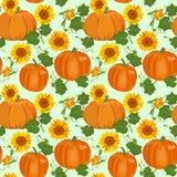 Bezszwowy wzór z baniami i słonecznikami również zwrócić corel ilustracji wektora Obraz Stock