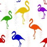 Bezszwowy wzór z barwiącym tęcza flamingiem ilustracji