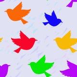 Bezszwowy wzór z barwiącymi tęcza ptakami ilustracji