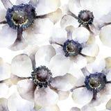 Bezszwowy wzór z białymi anemonami ilustracja wektor