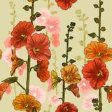 Bezszwowy wzór z bindweed kwiatami royalty ilustracja