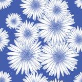 Bezszwowy wzór z chamomile, dekoracyjny tło ilustracji