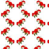 Bezszwowy wzór z chamomile i maczków kwiatami Obrazy Royalty Free