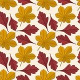 Bezszwowy wzór z cisawymi i głogowymi jesień liśćmi royalty ilustracja