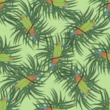Bezszwowy wzór z colourful papugą ilustracja wektor
