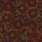 Bezszwowy wzór z cytrusów plasterkami Obrazy Royalty Free