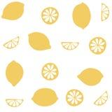 Bezszwowy wzór z cytrus owoc clices Zdjęcie Stock