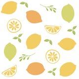Bezszwowy wzór z cytrus owoc clices Zdjęcia Royalty Free