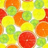 Bezszwowy wzór z cytryny, wapna, pomarańczowych i grapefruitowych plasterkami, obrazy royalty free