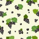 Bezszwowy wzór z czarnego rodzynku jagodami również zwrócić corel ilustracji wektora royalty ilustracja