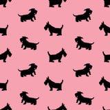 Bezszwowy wzór z czarnych psów sylwetkami na p, scotchterrier royalty ilustracja