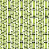 Bezszwowy wzór z czarnych sylwetek bambusowymi drzewami na białym tle Niekończący się ręka rysująca druk tekstura wektor Zdjęcia Royalty Free